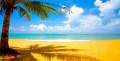 Piękne zdjęcia słonecznych plaż