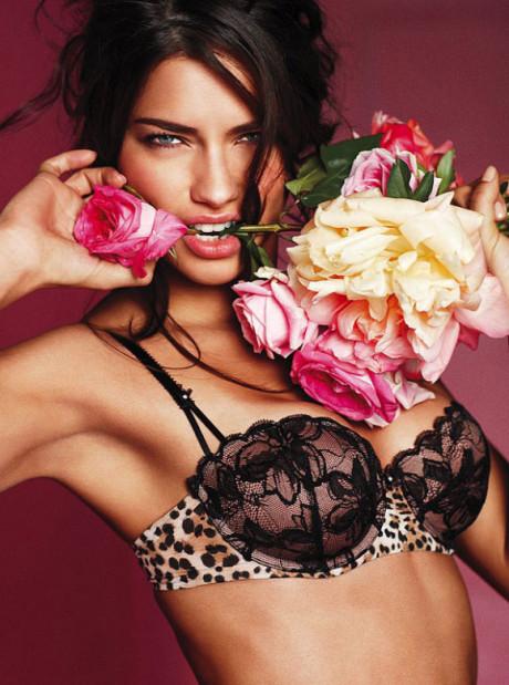 Adriana Lima – Victoria's Secret Lingerie 2010 - 8