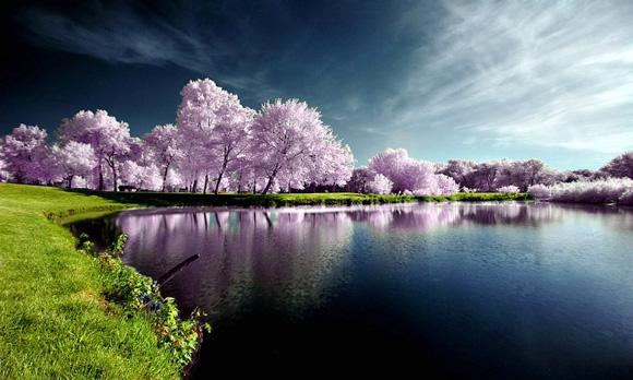 Piękne widoki