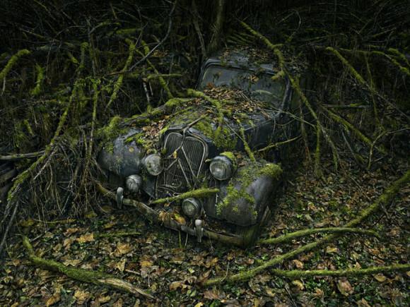 Czy-samochody-ida-do-nieba-Peter-Lippman1