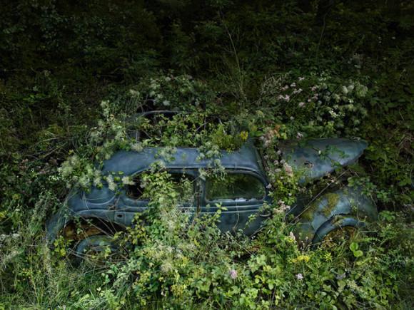 Czy-samochody-ida-do-nieba-Peter-Lippman2