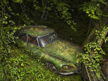 Czy-samochody-ida-do-nieba-Peter-Lippman3