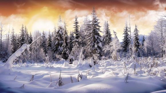 Źródło: www.1366x768.ru