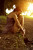 zmyslowe-portrety-kobiet8