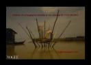 luna-graphy-wrzesien-2013