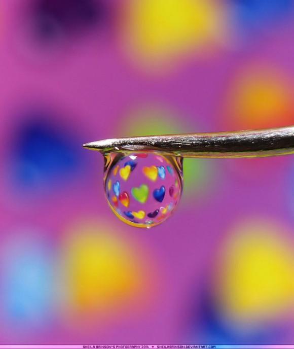 Makrofotografia, krople wody - Sheila Brinson zdjęcie - 5