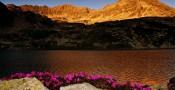 Piękne krajobrazy na pulpit – Cornel Pufan
