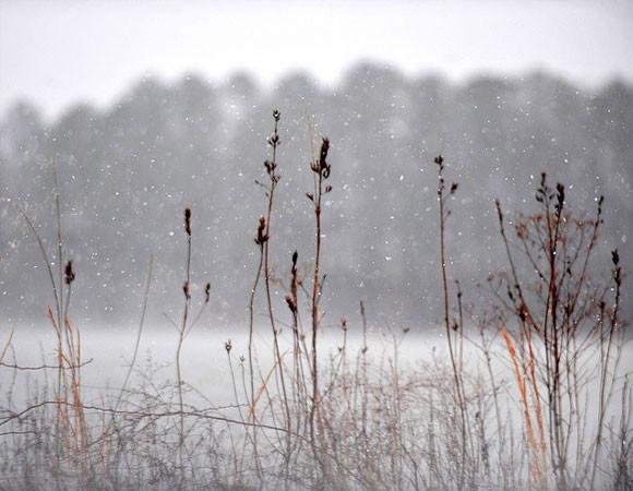 zdjecia-zimy-10