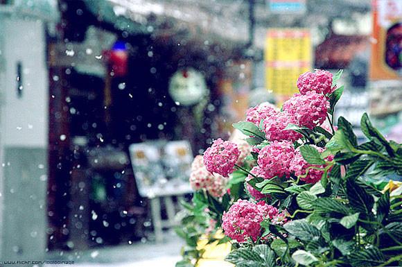 zdjecia-zimy-12
