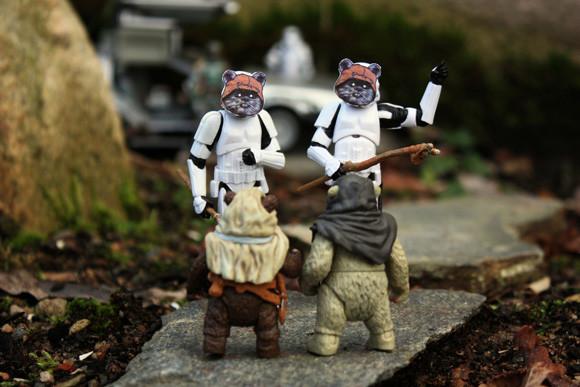 Star Wars - szturmowcy - 13